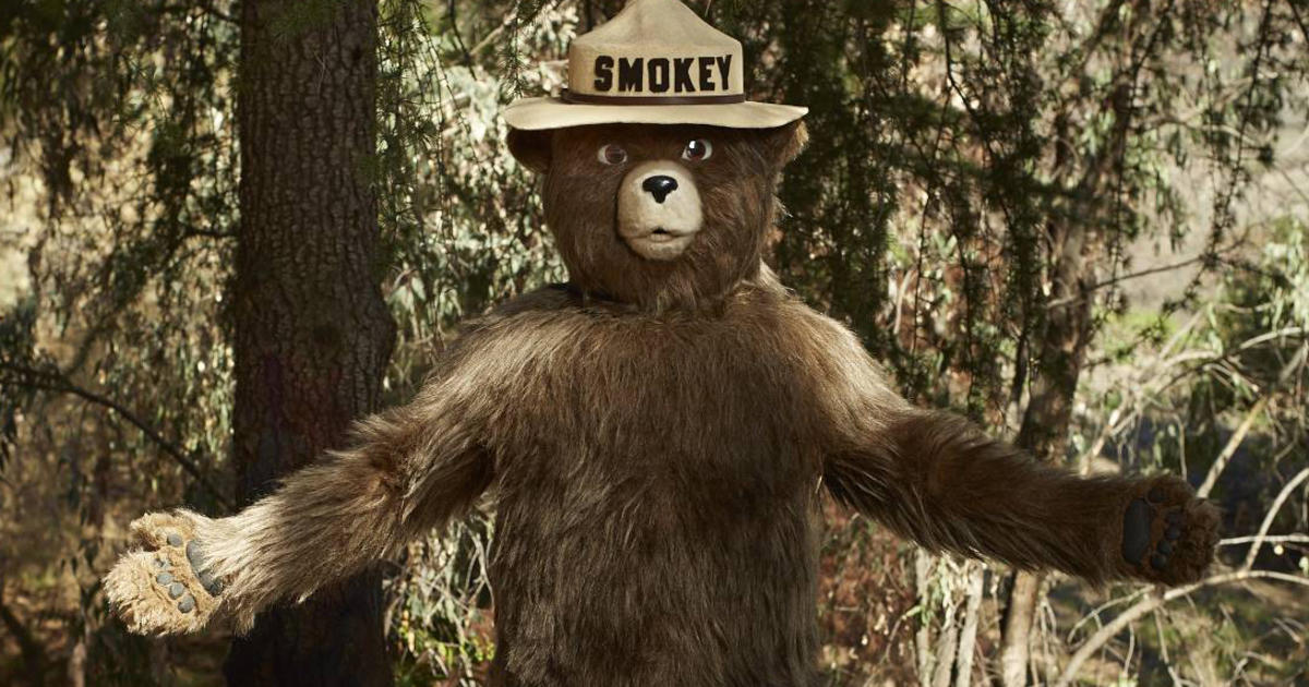 smokey the bear turns 70 years old gets makeover cbs news