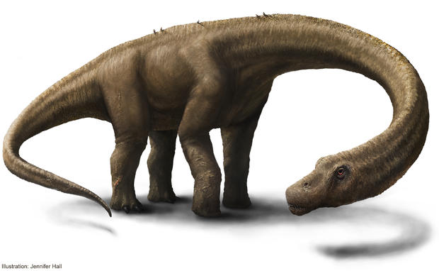 artist-rendering-2-hall-dreadnoughtus-reconstruction.jpg