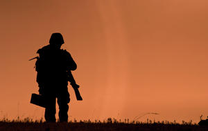 Veterans soldier generic