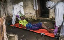 African Ebola outbreak could result in 5-10,000 new cases weekly
