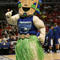 mascots-islanders-73612035.jpg