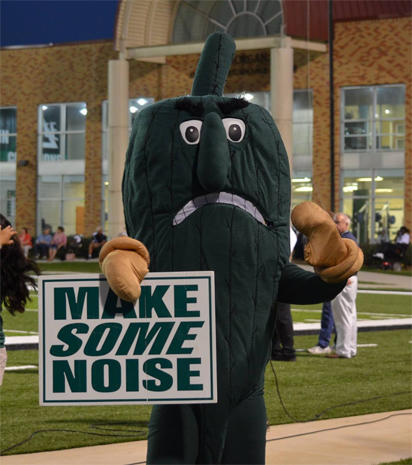Lovable (and lovably bizarre) college sports mascots