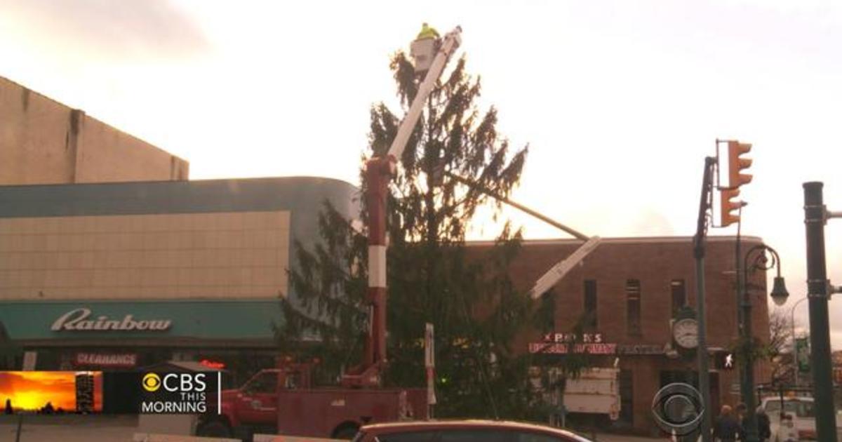 pennsylvania town to replace ugly christmas tree cbs news
