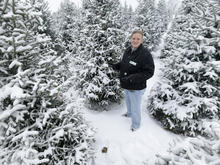 christmas-tree-farm-promo-ap728271809681.jpg
