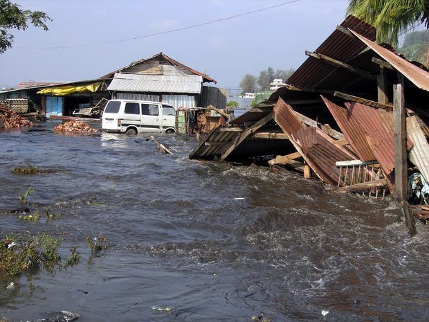 very short essay on tsunami
