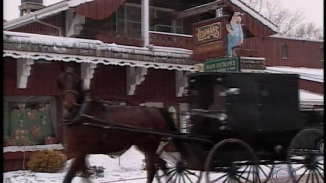 amish-horse.jpg