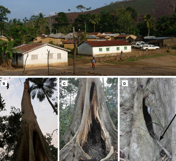 ebola-village.jpg