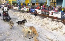 Iditarod dog sled race starts with more slush than mush