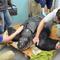 south-carolina-aquarium-sea-turtle-rescue-program-leatherback-sea-turtle-march-2015-44.jpg