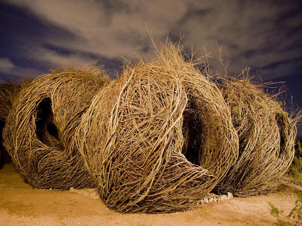 Patrick Dougherty's giant stick sculptures