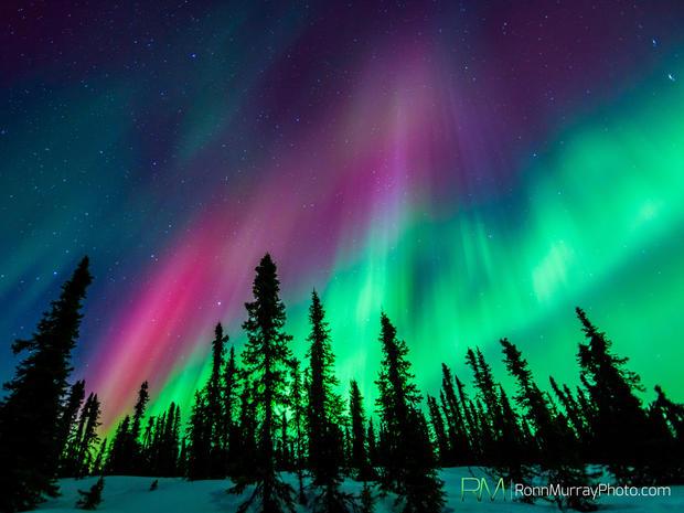 Aurora Borealis Alaska S Northern Lights Pictures