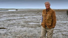Picking up the pieces of Bob Simon's unfinished story