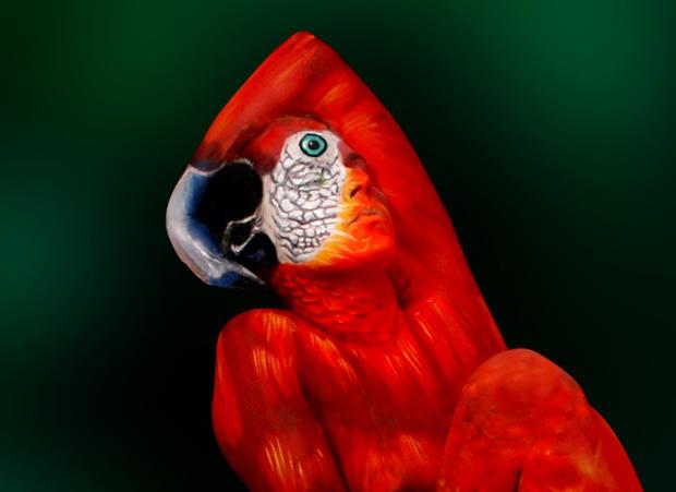 body-painting-papagei-2-detail.jpg