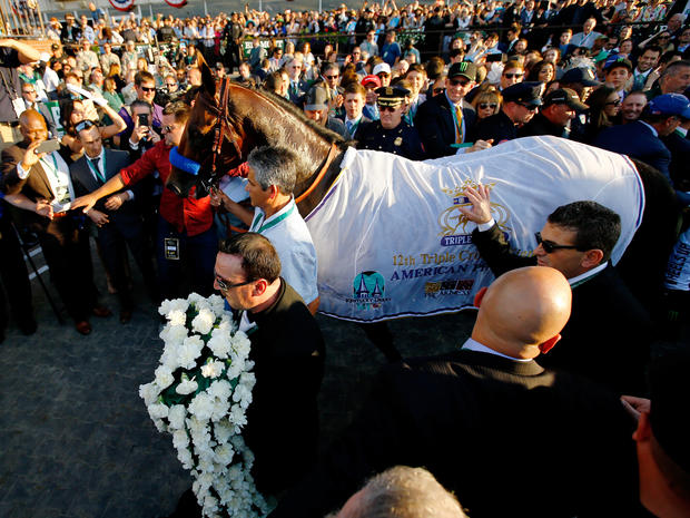 Fun facts about American Pharoah