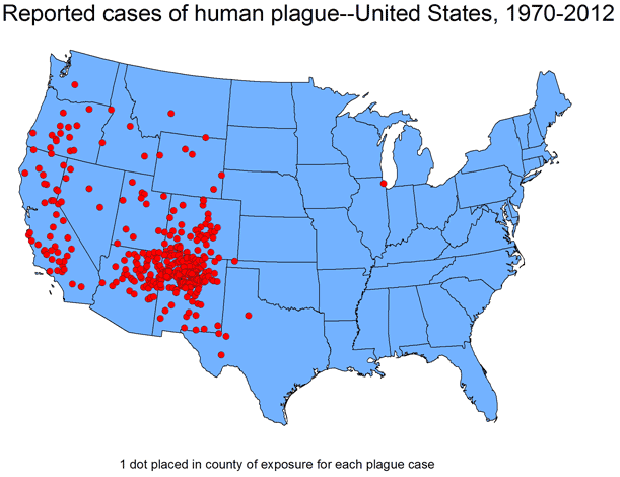 Plague is most commonly found in the western U.S.               CDC