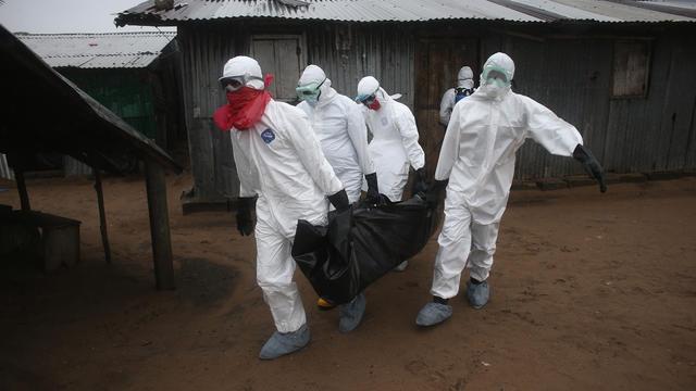 ebolavirus.jpg