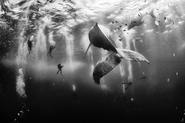 2015 National Geographic Traveler Photo Contest winners