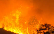 Thousands of firefighters struggle against wildfires