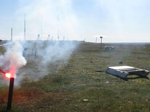 Flares are fired in a futile effort to convince polar bears to leave the area surrounding a remote weather station on the northern Russian island of Vaygach