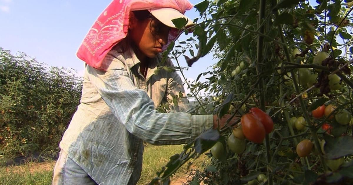 child labor debate Eighty five million: that's how many children are involved the worst forms of child labor,  the scope of the conventions' enforcement remains up for debate.