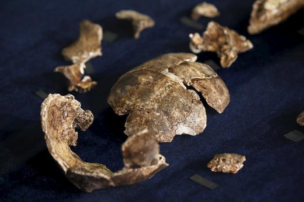 2015-09-10t110240z1980673805gf10000200140rtrmadp3archaeology-burials.jpg
