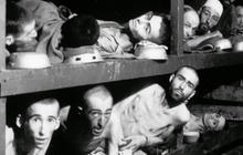 Holocaust: History's darkest chapter even darker