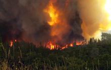 Rim Fire started by hunter, investigators say