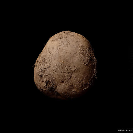 A $1 million potato photograph