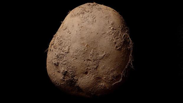 A $1 million potato photograph