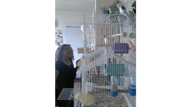 dinah-and-birds.jpg