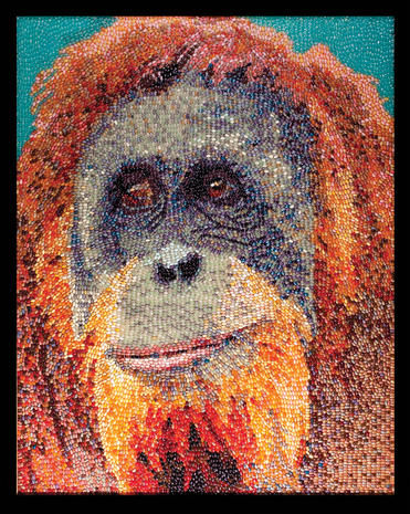 Quot Mona Lisa Quot Art Made With Jelly Beans Pictures Cbs News