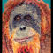 jelly-bean-art-orangutan.jpg