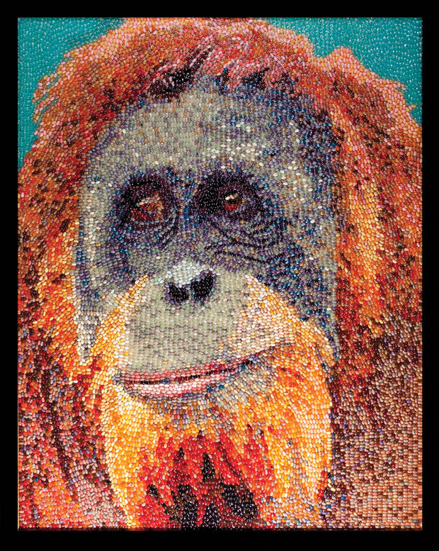 jelly-bean-art-orangutan.jpg