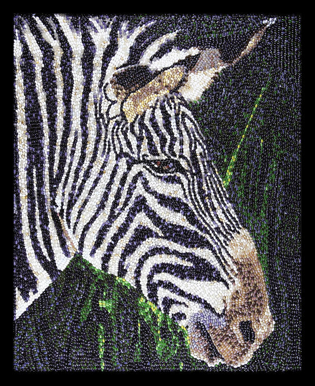 jelly-bean-art-zebra.jpg