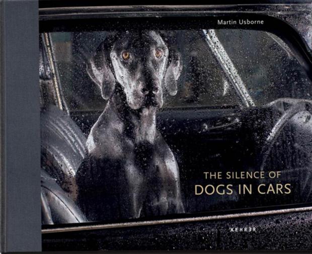silenceofdogsincars-cvr.jpg