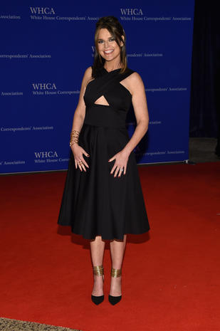 White House Correspondents' Dinner 2016 red carpet