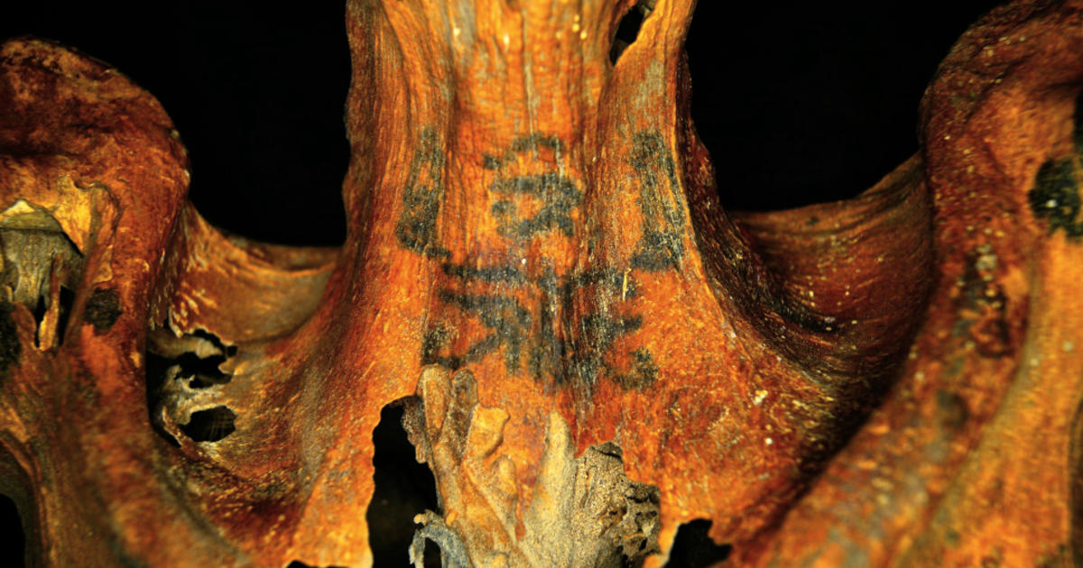 Ancient Egyptian mummy has some surprising tattoos