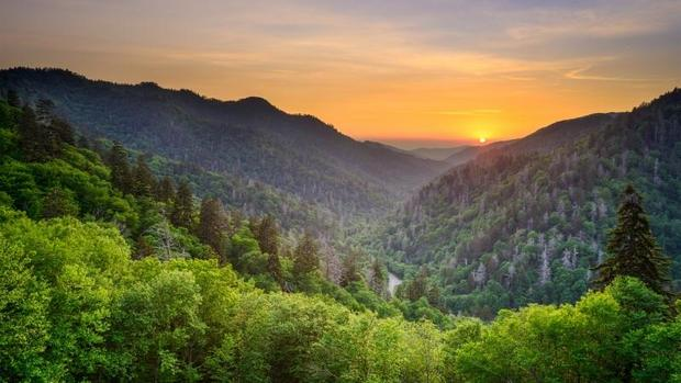 15 cool facts about America's national parks