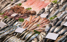 The fishy business of seafood fraud