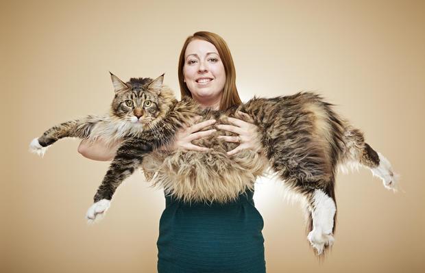 ludo-longest-cat-0112.jpg