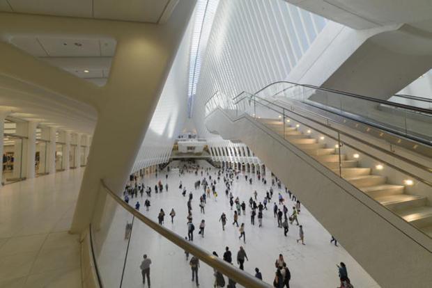 daniel-jones-concourse-and-stairs.jpg