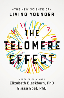 telomere-effect.png