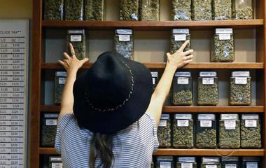 Landmark report released on marijuana's health benefits, hazards