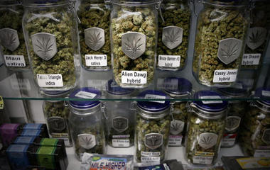 Trump White House worries marijuana business owners