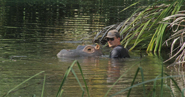 rob-pilley-with-hippo.jpg