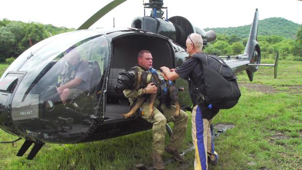 d2-patta-skydiving-dogs-carter-redman-pkg-transfer.jpg