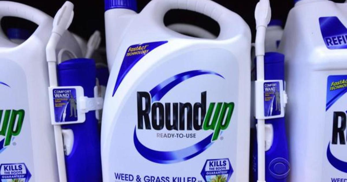 New court papers charge Monsanto manipulated data about safety of Roundup  weed killer