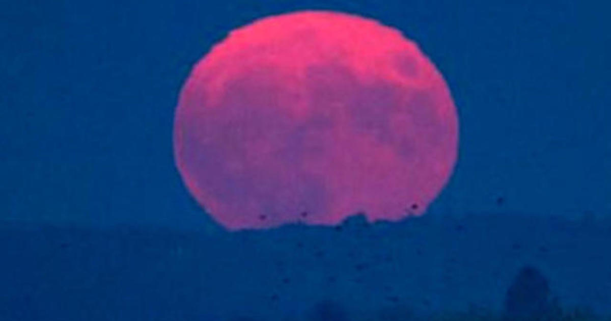 April S Spectacular Pink Moon Rises This Week Cbs News