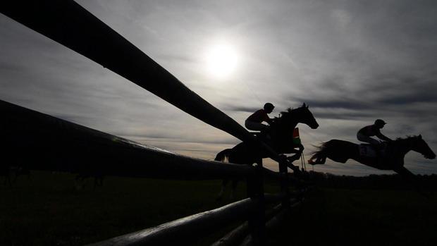 steeplechase-preview1.jpg