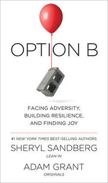 option-b-cover-knopf-244.jpg